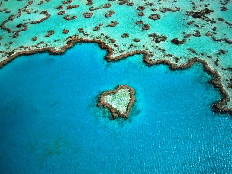 Préparer mon évasion en Australie graphic
