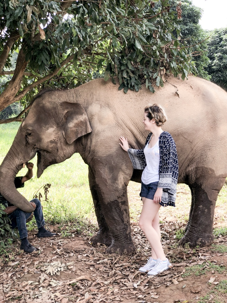 Thailande: Elelphant nature park graphic